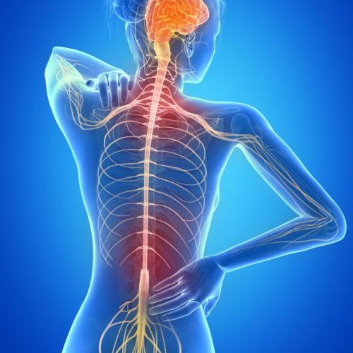 Программа «Лечение рассеянного склероза»